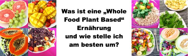 WasIstWFBP_Banner