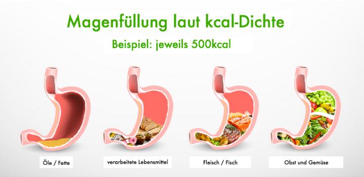 kcal_Dichte